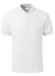 Polo Blanc.png