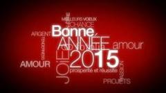 Bonne année 2015.jpg